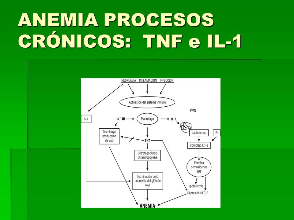 ANEMIA PROCESOS CRÓNICOS: TNF e IL-1