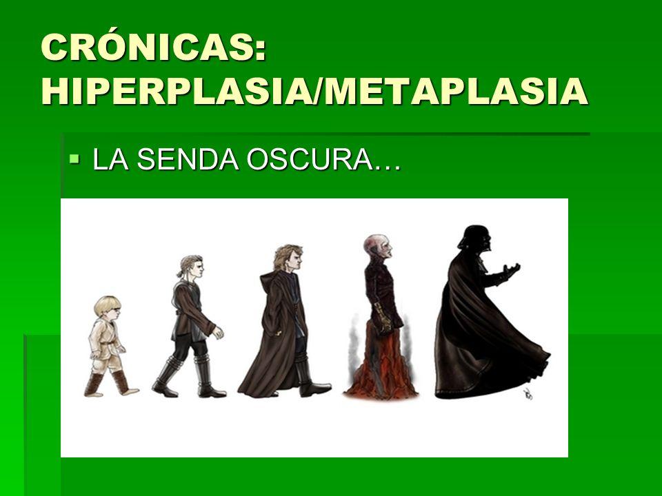 CRÓNICAS: HIPERPLASIA/METAPLASIA LA SENDA OSCURA… LA SENDA OSCURA…
