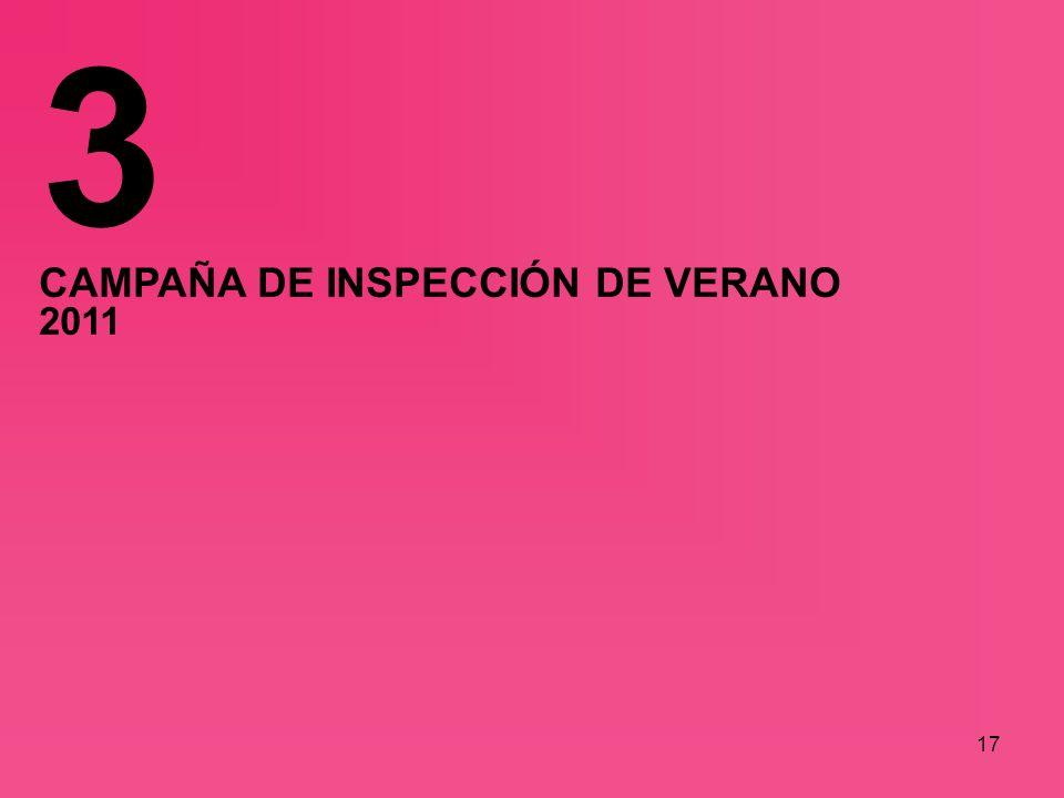 17 CAMPAÑA DE INSPECCIÓN DE VERANO 2011 3