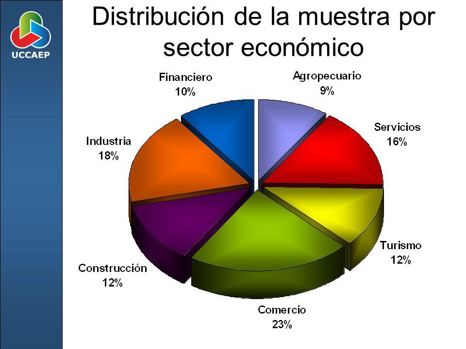 Distribución de la muestra por sector económico