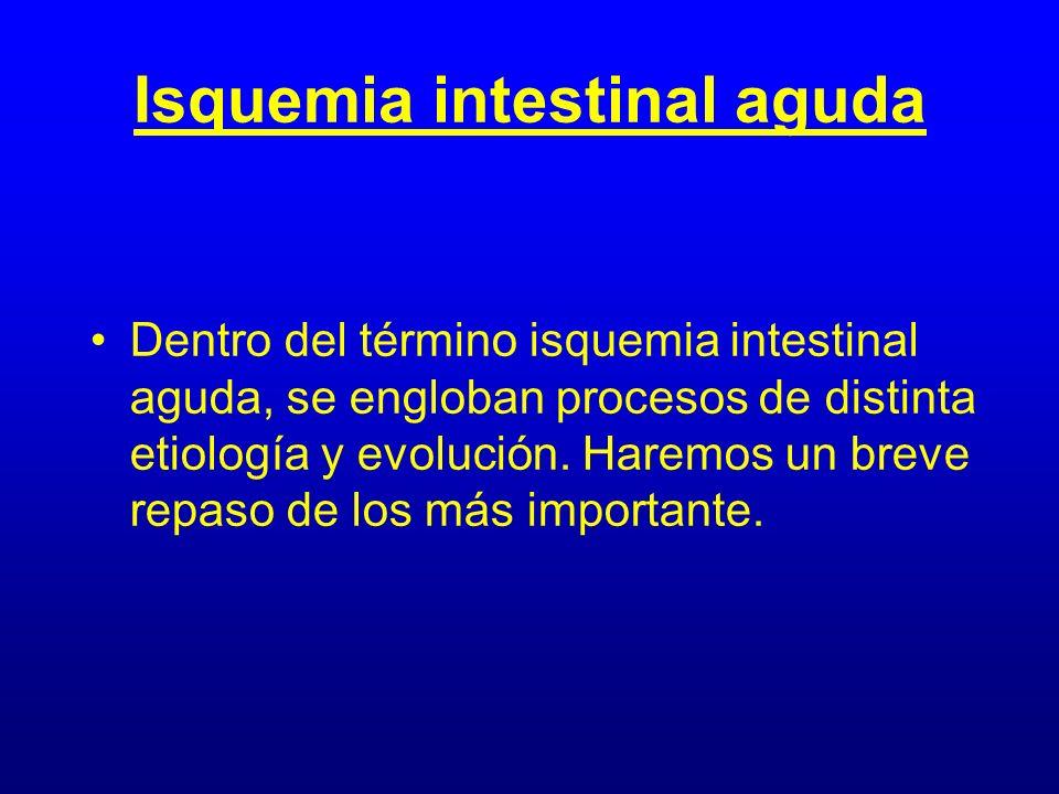 Isquemia intestinal aguda Dentro del término isquemia intestinal aguda, se engloban procesos de distinta etiología y evolución. Haremos un breve repas