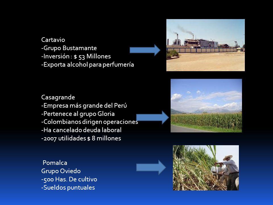 Cartavio -Grupo Bustamante -Inversión : $ 53 Millones -Exporta alcohol para perfumería Casagrande -Empresa más grande del Perú -Pertenece al grupo Glo