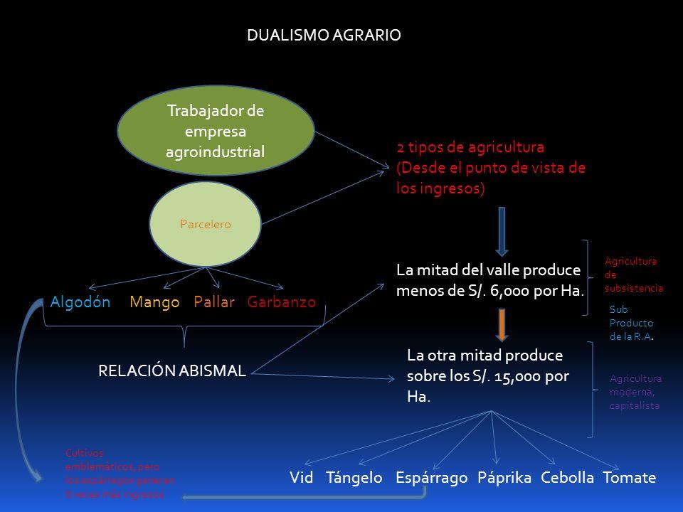 DUALISMO AGRARIO Trabajador de empresa agroindustrial Parcelero 2 tipos de agricultura (Desde el punto de vista de los ingresos) AlgodónMangoPallarGar