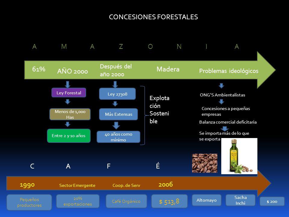 CONCESIONES FORESTALES 61% AMAZONIAAMAZONIA AÑO 2000 Ley Forestal Menos de 1,000 Has Entre 2 y 10 años Después del año 2000 Ley 27308 Más Extensas 40