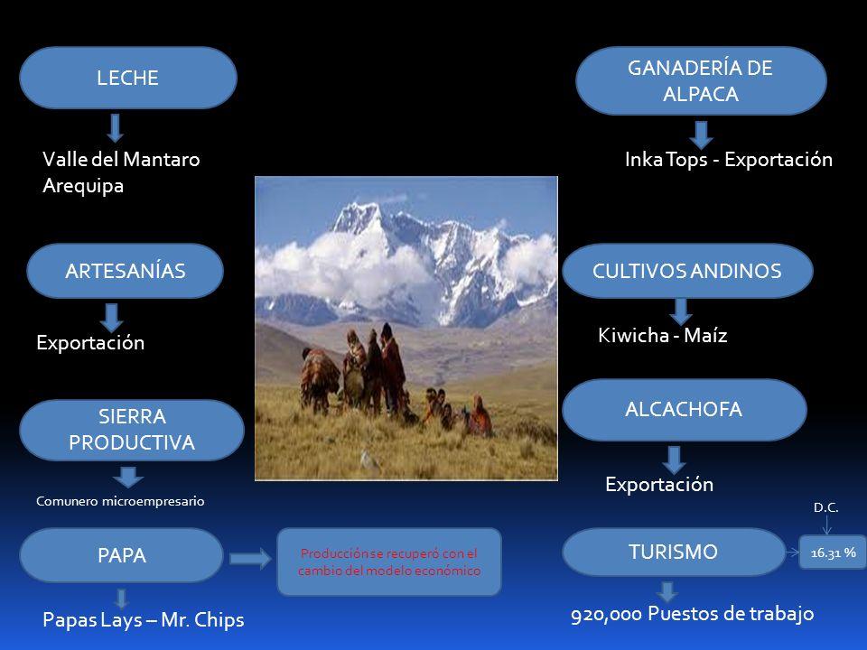 LECHE GANADERÍA DE ALPACA ARTESANÍASCULTIVOS ANDINOS SIERRA PRODUCTIVA ALCACHOFA PAPA TURISMO Comunero microempresario Exportación Kiwicha - Maíz Inka