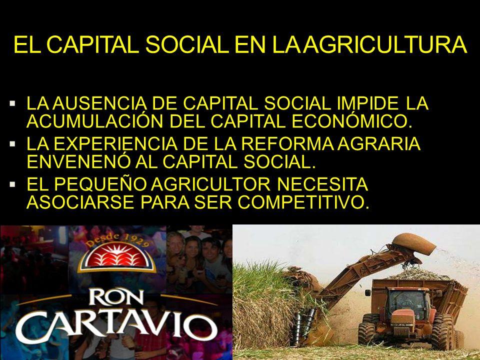 EL CAPITAL SOCIAL EN LA AGRICULTURA LA AUSENCIA DE CAPITAL SOCIAL IMPIDE LA ACUMULACIÓN DEL CAPITAL ECONÓMICO. LA EXPERIENCIA DE LA REFORMA AGRARIA EN