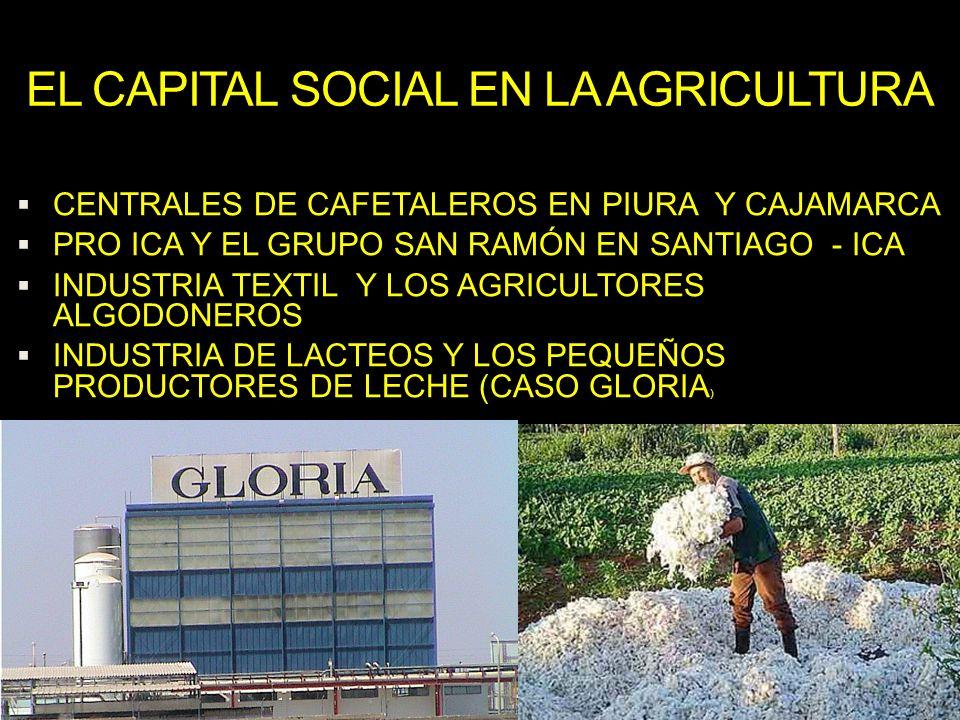 EL CAPITAL SOCIAL EN LA AGRICULTURA CENTRALES DE CAFETALEROS EN PIURA Y CAJAMARCA PRO ICA Y EL GRUPO SAN RAMÓN EN SANTIAGO - ICA INDUSTRIA TEXTIL Y LO