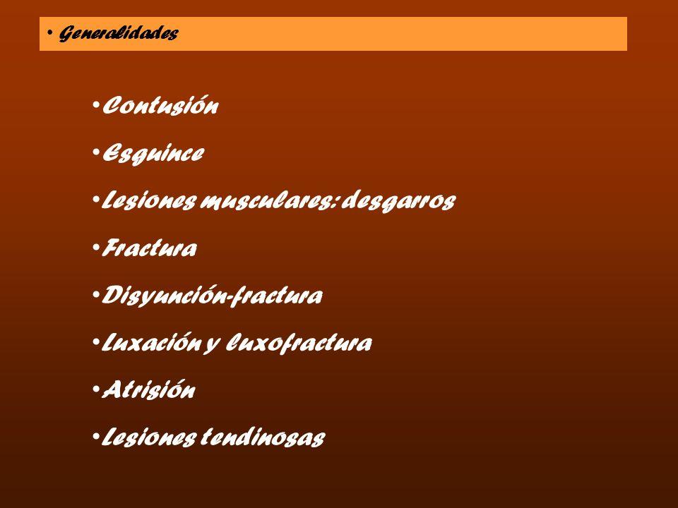 Generalidades Contusión Esguince Lesiones musculares: desgarros Fractura Disyunción-fractura Luxación y luxofractura Atrisión Lesiones tendinosas