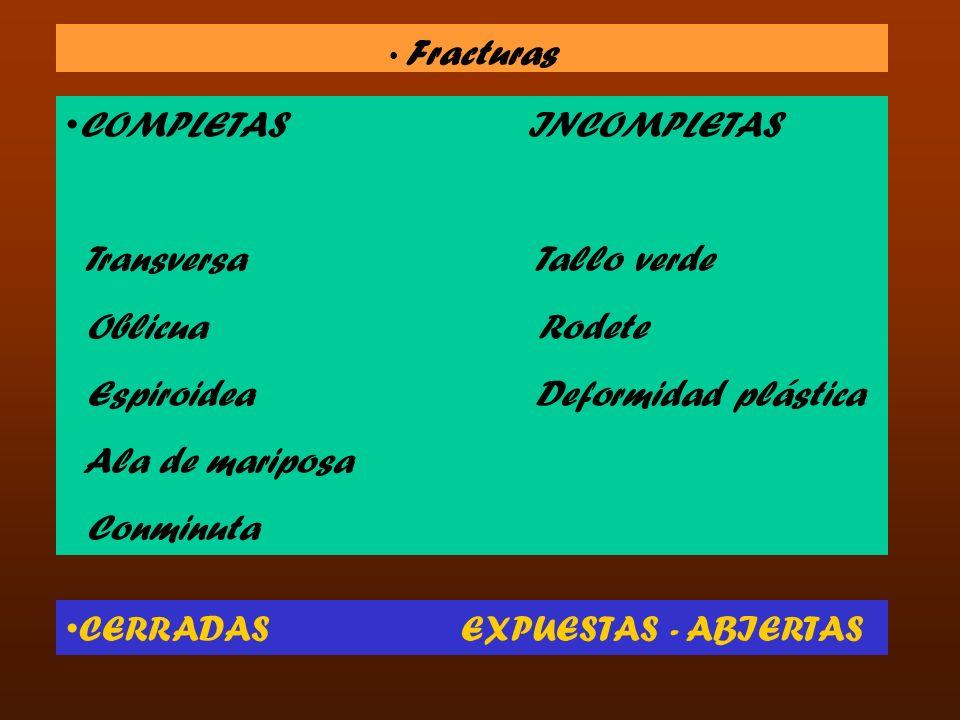 Fracturas COMPLETAS INCOMPLETAS Transversa Tallo verde Oblicua Rodete Espiroidea Deformidad plástica Ala de mariposa Conminuta CERRADAS EXPUESTAS - AB
