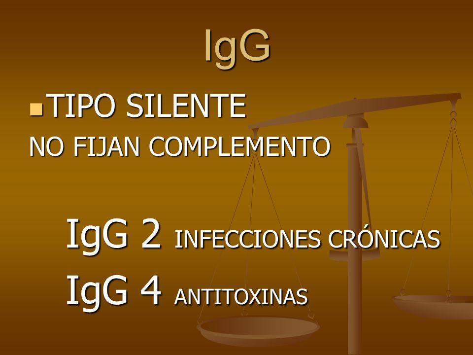 IgG TIPO SILENTE TIPO SILENTE NO FIJAN COMPLEMENTO IgG 2 INFECCIONES CRÓNICAS IgG 2 INFECCIONES CRÓNICAS IgG 4 ANTITOXINAS IgG 4 ANTITOXINAS