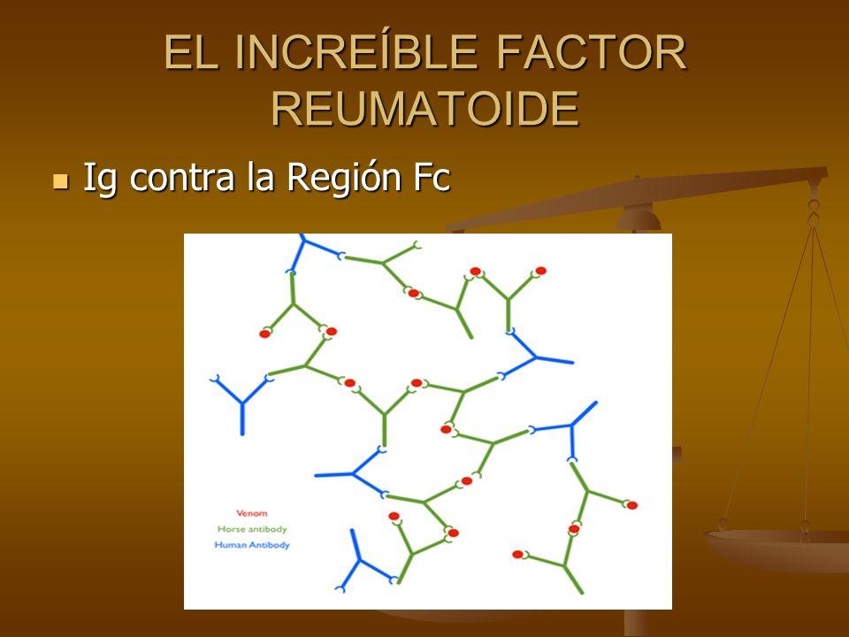 EL INCREÍBLE FACTOR REUMATOIDE Ig contra la Región Fc Ig contra la Región Fc