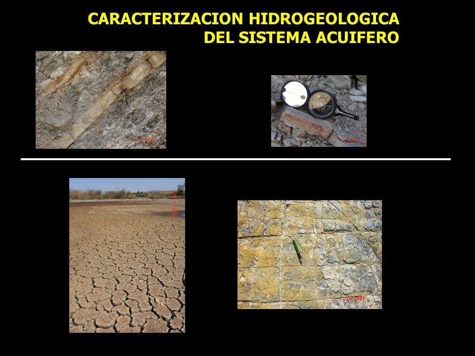 CARACTERIZACION HIDROGEOLOGICA DEL SISTEMA ACUIFERO