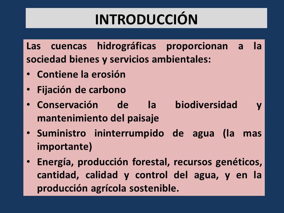 Las cuencas hidrográficas proporcionan a la sociedad bienes y servicios ambientales: Contiene la erosión Fijación de carbono Conservación de la biodiv