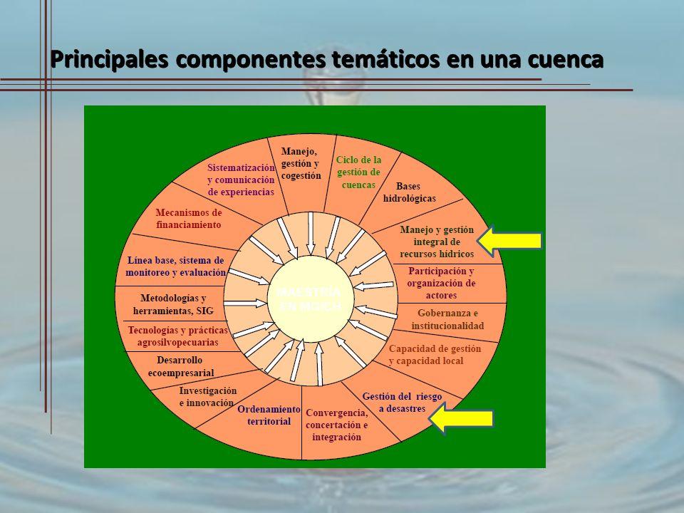 Principales componentes temáticos en una cuenca