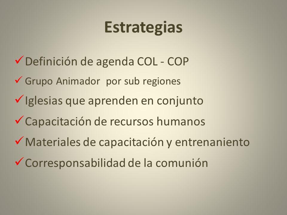 Estrategias Definición de agenda COL - COP Grupo Animador por sub regiones Iglesias que aprenden en conjunto Capacitación de recursos humanos Materiales de capacitación y entrenaniento Corresponsabilidad de la comunión