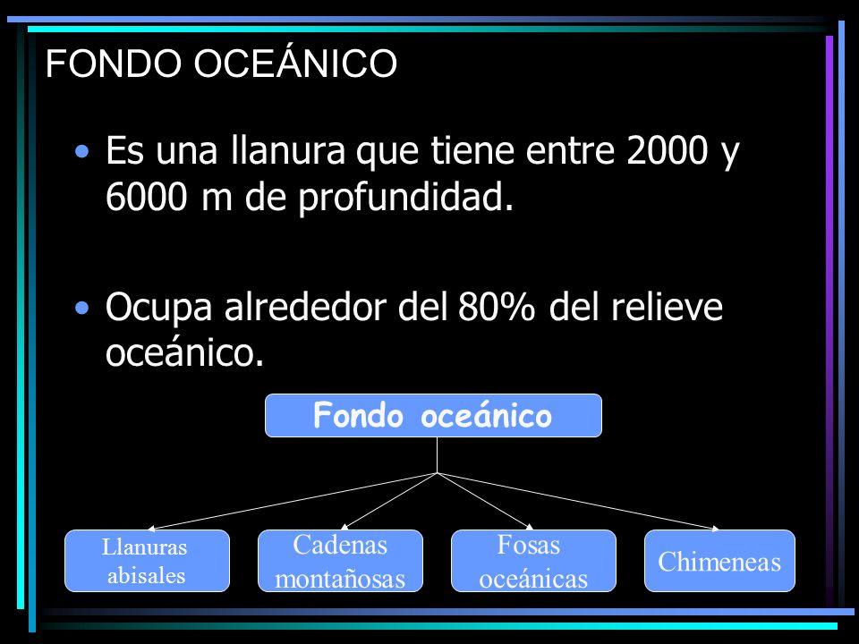FONDO OCEÁNICO Es una llanura que tiene entre 2000 y 6000 m de profundidad. Ocupa alrededor del 80% del relieve oceánico. Fondo oceánico Llanuras abis
