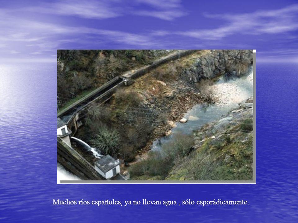 Muchos ríos españoles, ya no llevan agua, sólo esporádicamente.