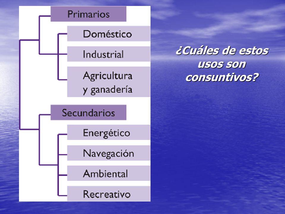 USOS DE OCIO Y NAVEGACIÓN La navegación fluvial requiere un caudal mínimo.