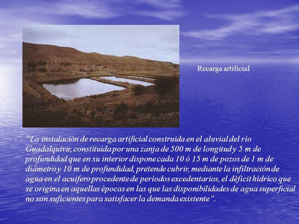 La instalación de recarga artificial construida en el aluvial del río Guadalquivir, constituida por una zanja de 500 m de longitud y 5 m de profundida
