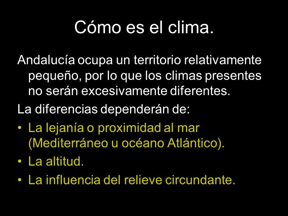 Andalucía ocupa un territorio relativamente pequeño, por lo que los climas presentes no serán excesivamente diferentes. La diferencias dependerán de: