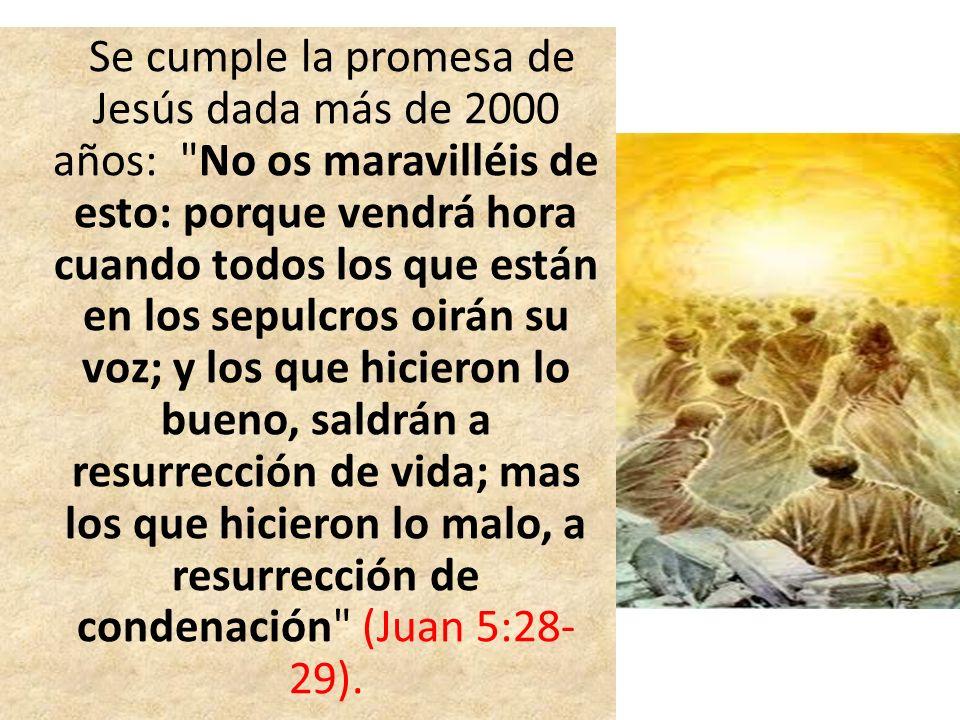 Se cumple la promesa de Jesús dada más de 2000 años: