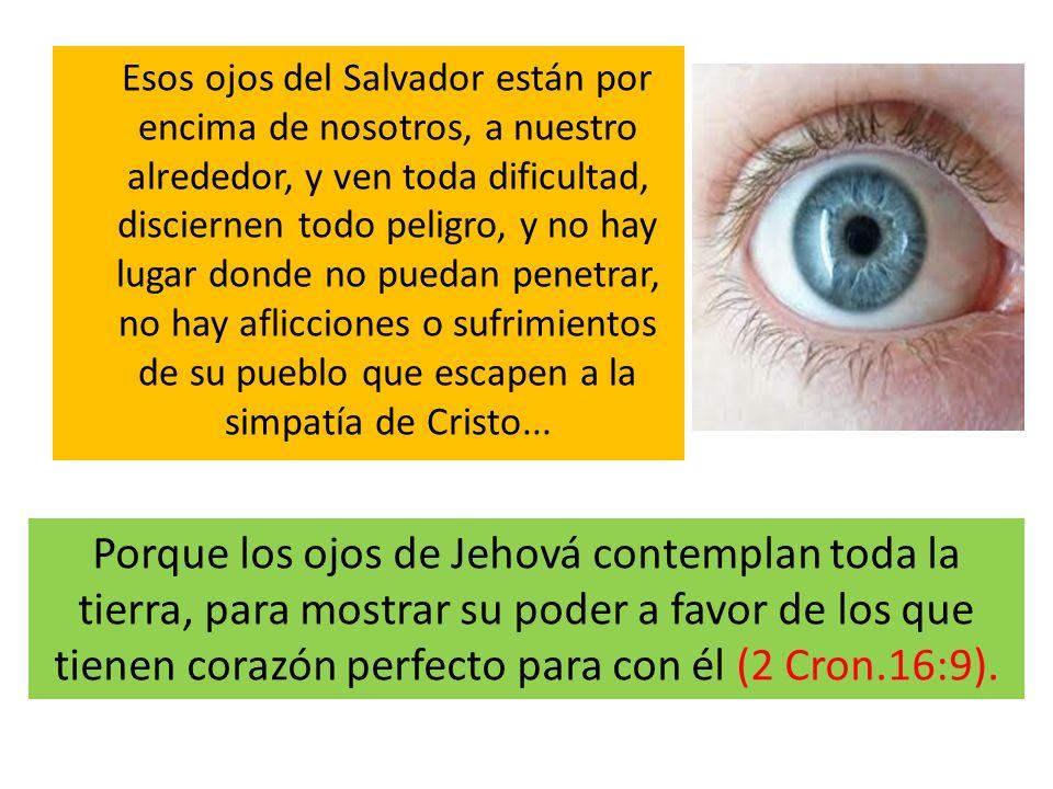 Esos ojos del Salvador están por encima de nosotros, a nuestro alrededor, y ven toda dificultad, disciernen todo peligro, y no hay lugar donde no pued