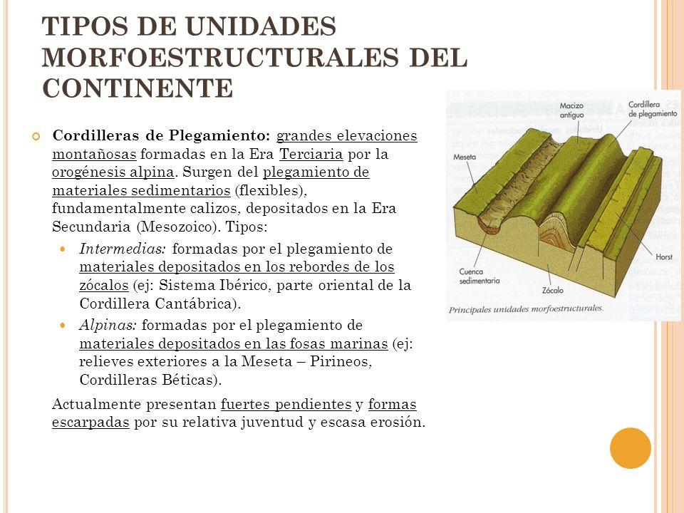 TIPOS DE UNIDADES MORFOESTRUCTURALES DEL CONTINENTE Cordilleras de Plegamiento: grandes elevaciones montañosas formadas en la Era Terciaria por la oro