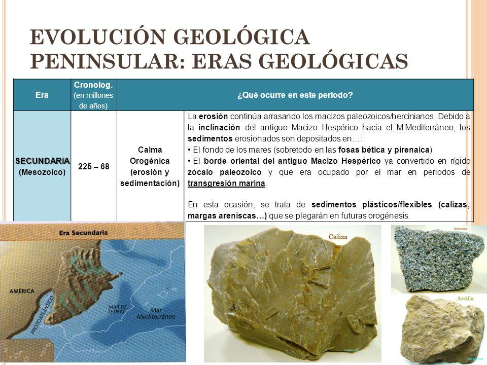 EVOLUCIÓN GEOLÓGICA PENINSULAR: ERAS GEOLÓGICAS Era Cronolog. (en millones de años) ¿Qué ocurre en este periodo? SECUNDARIA SECUNDARIA (Mesozoico) 225