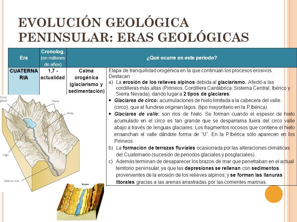Era Cronolog. (en millones de años) ¿Qué ocurre en este periodo? CUATERNA RIA 1,7 - actualidad Calma orogénica (glaciarismo y sedimentación) Etapa de