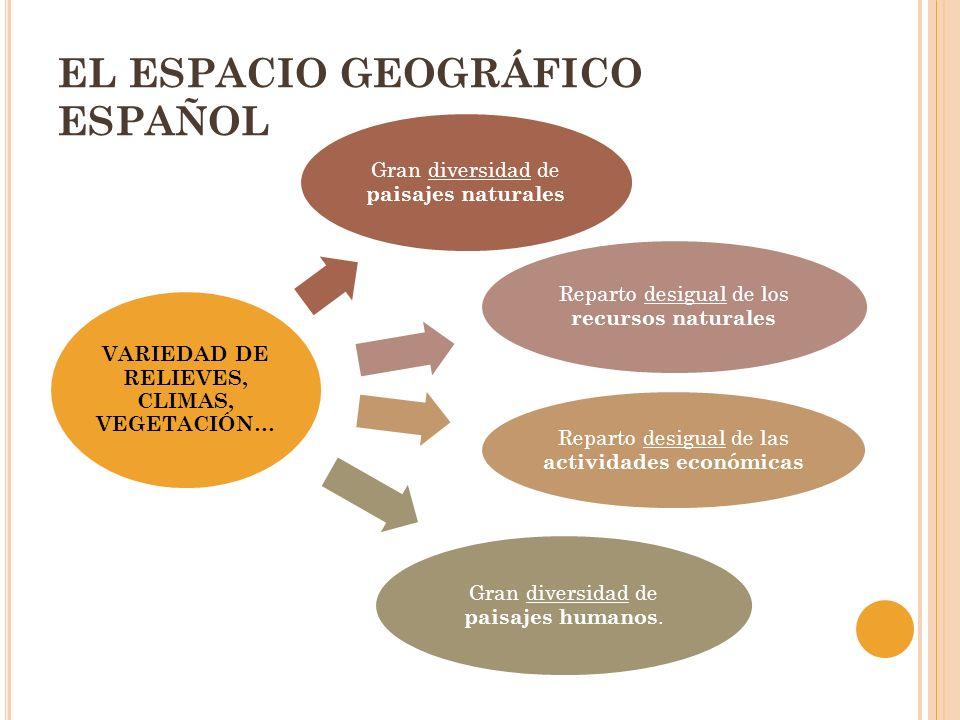 EL ESPACIO GEOGRÁFICO ESPAÑOL VARIEDAD DE RELIEVES, CLIMAS, VEGETACIÓN… Gran diversidad de paisajes naturales Reparto desigual de los recursos natural