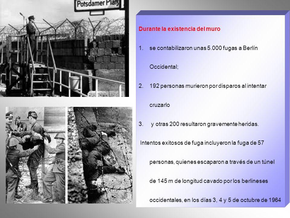 El muro tenía una longitud de unos 150 km. Era de hormigón armado y poseía una altura de 3,6 m. con un interior formado por cables de acero para aumen