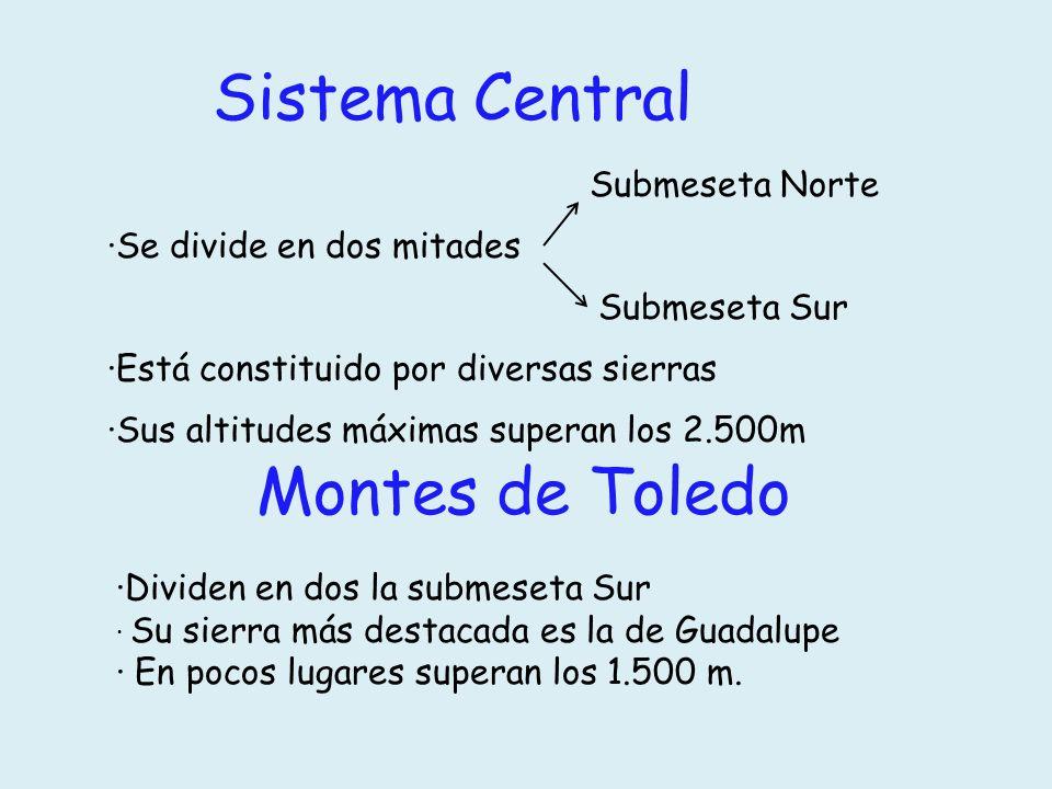 ·Se divide en dos mitades Montes de Toledo ·Dividen en dos la submeseta Sur · Su sierra más destacada es la de Guadalupe · En pocos lugares superan lo