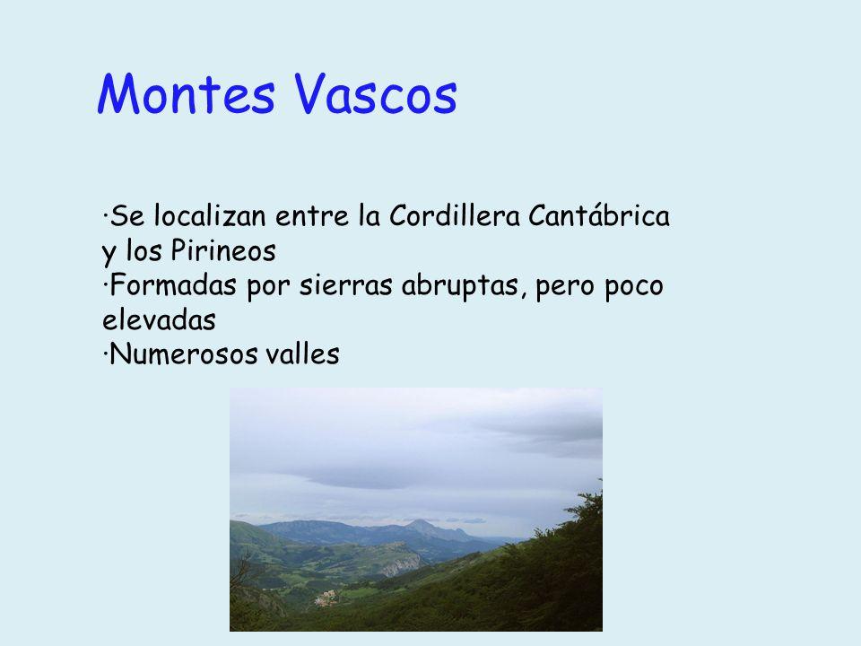 Montes Vascos ·Se localizan entre la Cordillera Cantábrica y los Pirineos ·Formadas por sierras abruptas, pero poco elevadas ·Numerosos valles