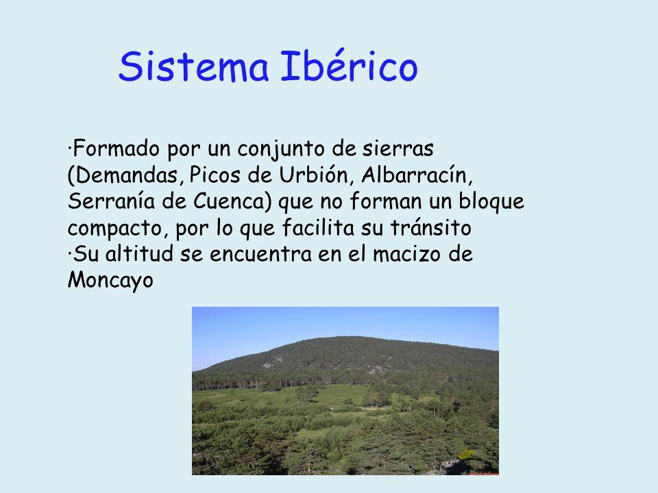Sistema Ibérico ·Formado por un conjunto de sierras (Demandas, Picos de Urbión, Albarracín, Serranía de Cuenca) que no forman un bloque compacto, por
