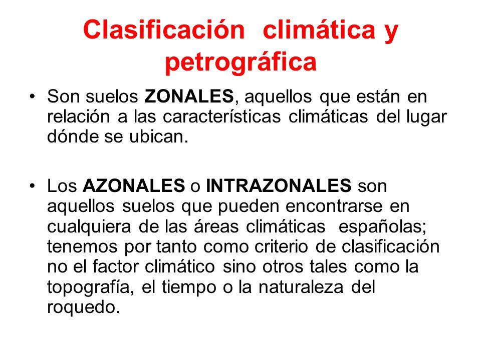 Clasificación climática y petrográfica Son suelos ZONALES, aquellos que están en relación a las características climáticas del lugar dónde se ubican.