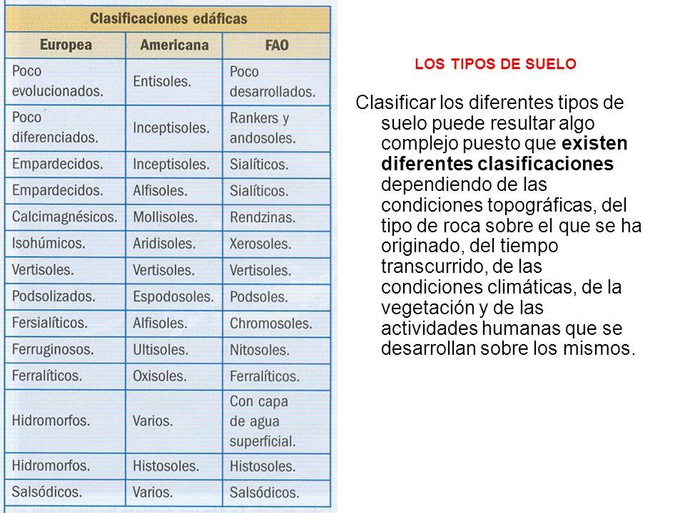 LOS TIPOS DE SUELO Clasificar los diferentes tipos de suelo puede resultar algo complejo puesto que existen diferentes clasificaciones dependiendo de