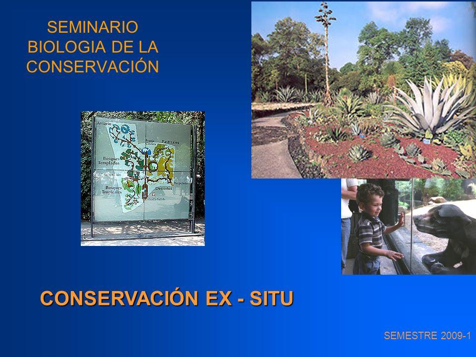 SEMINARIO BIOLOGIA DE LA CONSERVACIÓN SEMESTRE 2009-1 CONSERVACIÓN EX - SITU