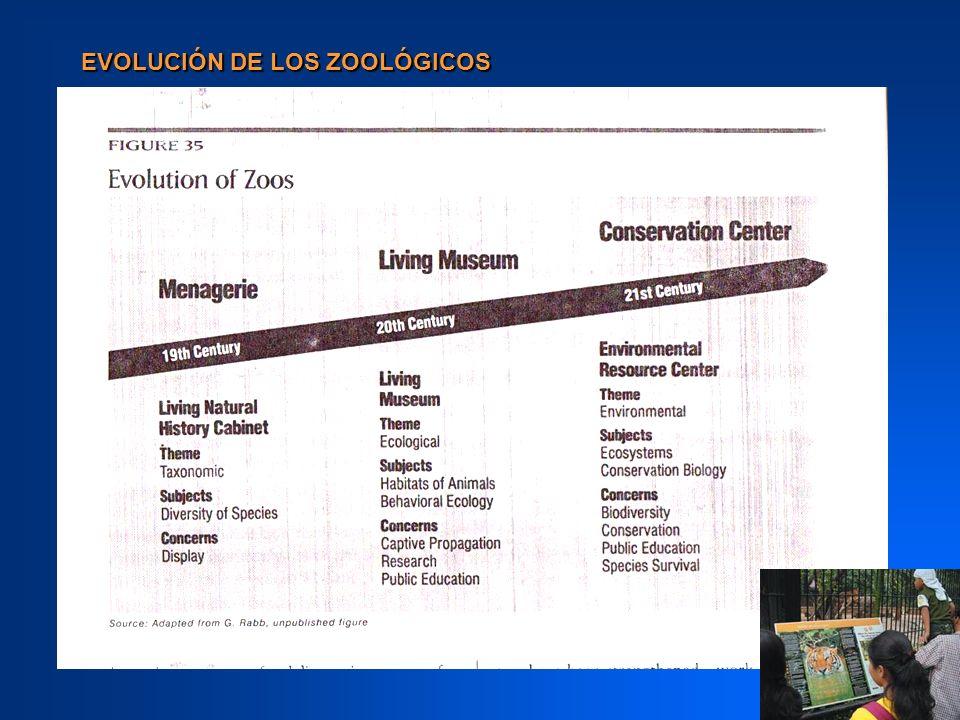 CONSERVACIÓN EX - SITU Se estima que hay en el mundo 500.000 animales que viven en zoológicos.