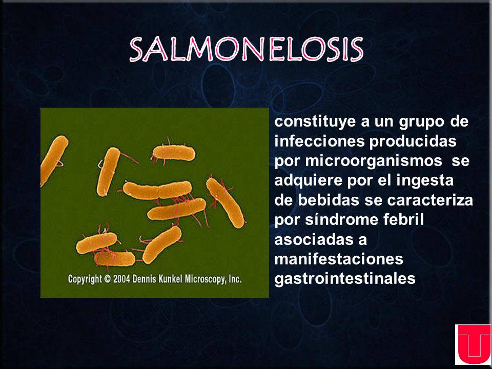 infección bacteriana que se caracteriza por diarrea y erupción cutánea.