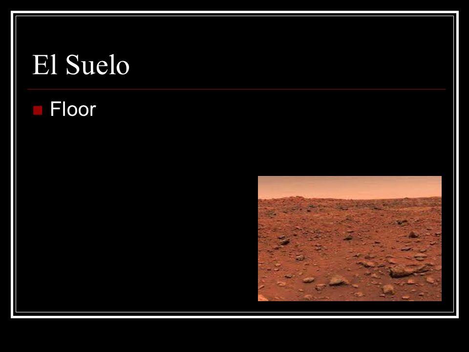 El Suelo Floor
