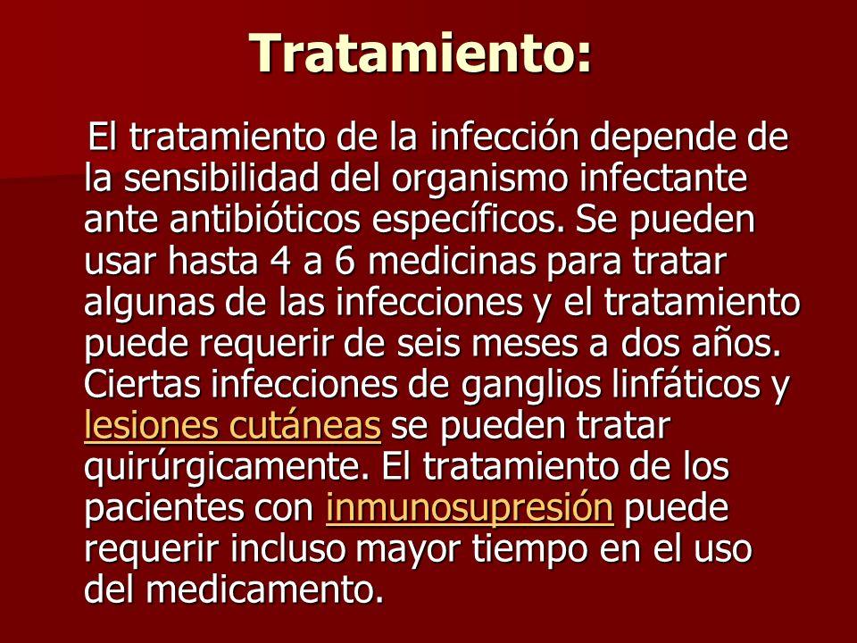 Tratamiento: Tratamiento: El tratamiento de la infección depende de la sensibilidad del organismo infectante ante antibióticos específicos.