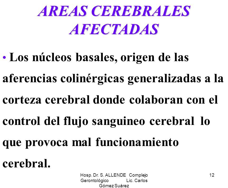 Hosp. Dr. S. ALLENDE Complejo Gerontológico Lic. Carlos Gómez Suárez 12 AREAS CEREBRALES AFECTADAS Los núcleos basales, origen de las aferencias colin