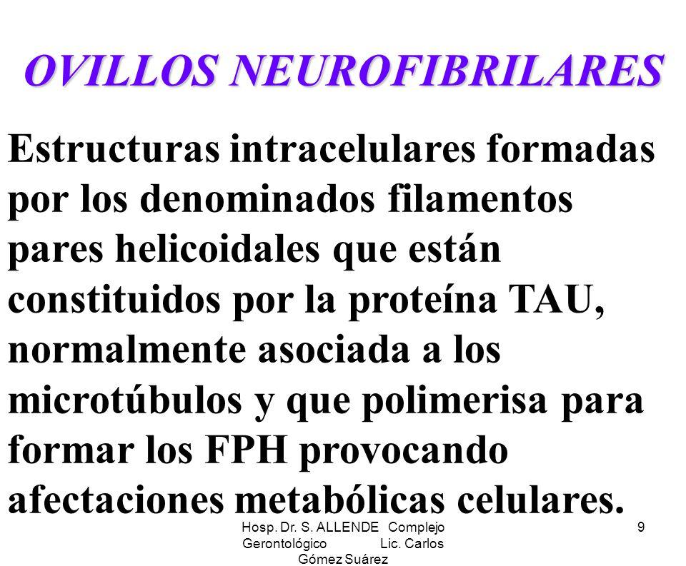 Hosp. Dr. S. ALLENDE Complejo Gerontológico Lic. Carlos Gómez Suárez 9 OVILLOS NEUROFIBRILARES Estructuras intracelulares formadas por los denominados