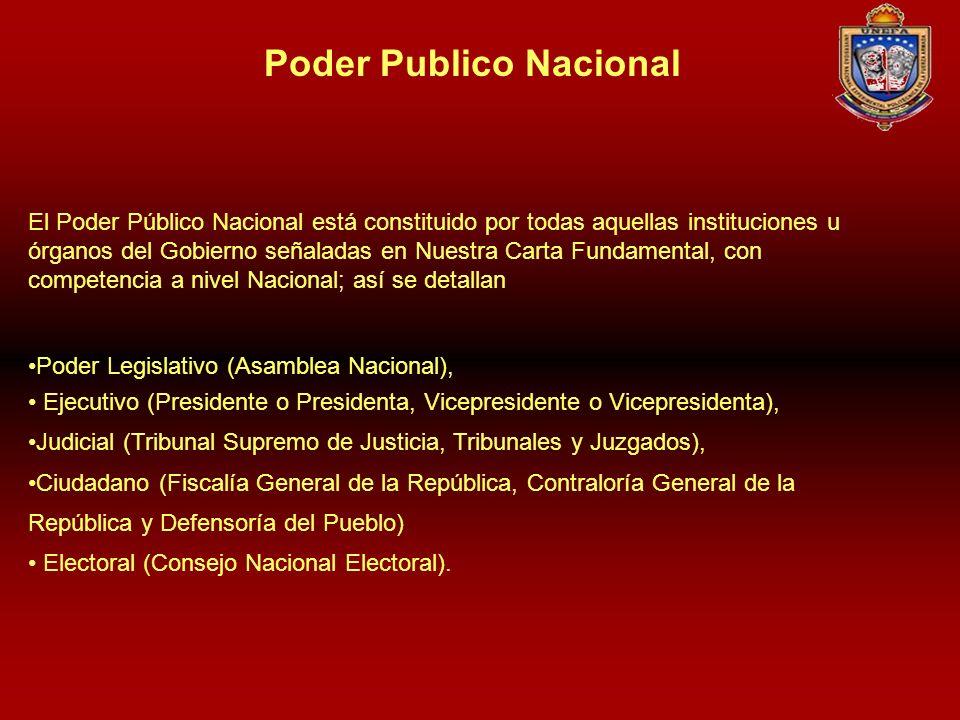 El Poder Público Nacional está constituido por todas aquellas instituciones u órganos del Gobierno señaladas en Nuestra Carta Fundamental, con compete