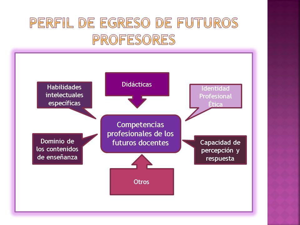 Didácticas Competencias profesionales de los futuros docentes Habilidades intelectuales específicas Dominio de los contenidos de enseñanza Otros Identidad Profesional Ética Capacidad de percepción y respuesta