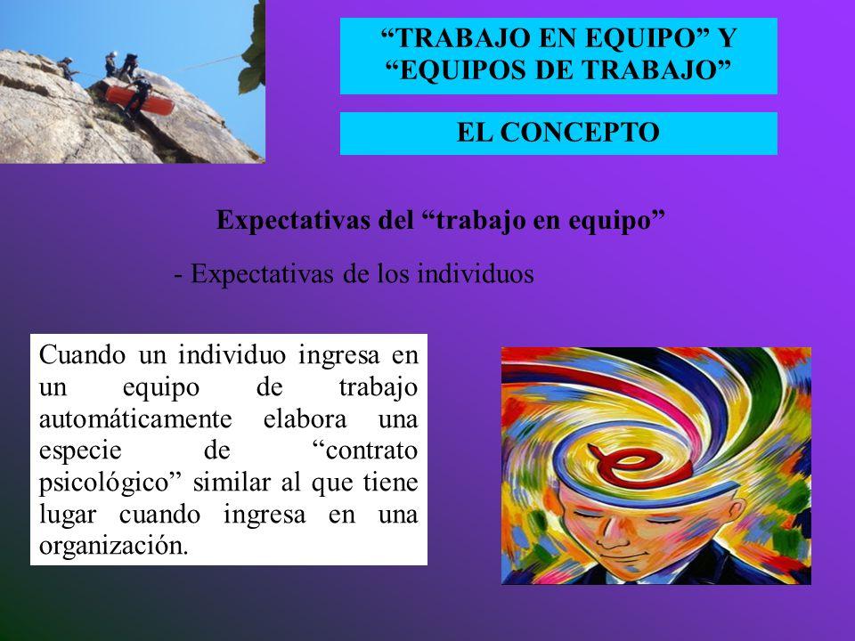 EL CONCEPTO TRABAJO EN EQUIPO Y EQUIPOS DE TRABAJO Expectativas del trabajo en equipo - Expectativas de las organizaciones a)Expectativas de excelenci