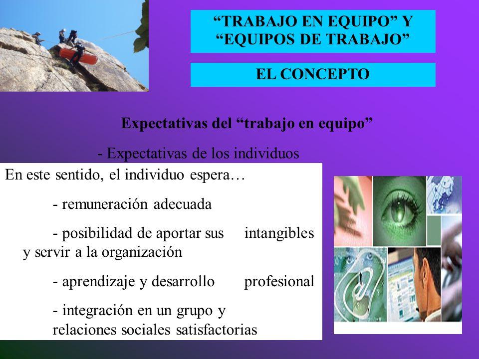 EL CONCEPTO TRABAJO EN EQUIPO Y EQUIPOS DE TRABAJO Expectativas del trabajo en equipo - Expectativas de los individuos Cuando un individuo ingresa en