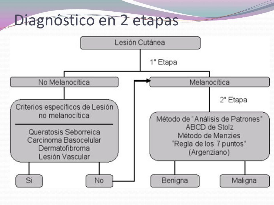 Lesiones no melanocíticas 1-QUERATOSIS SEBORREICAS 2-LESIONES VASCULARES 3-CARCINOMA BASOCELULAR 4-DERMATOFIBROMA
