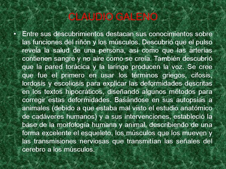 CLAUDIO GALENO Entre sus descubrimientos destacan sus conocimientos sobre las funciones del riñón y los músculos. Descubrió que el pulso revela la sal