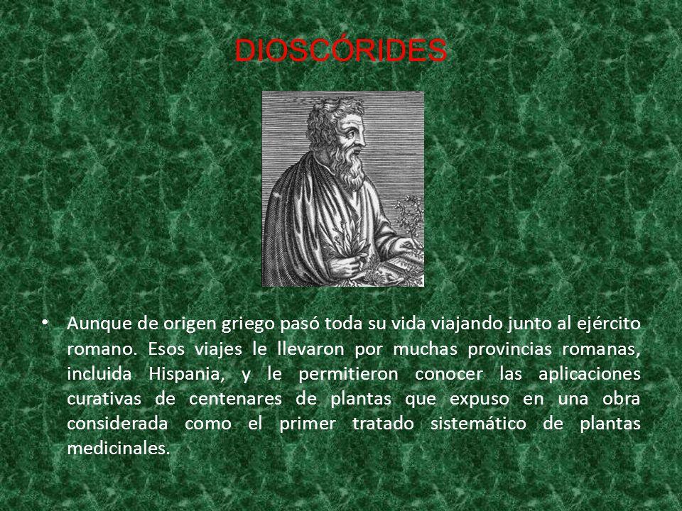 DIOSCÓRIDES Aunque de origen griego pasó toda su vida viajando junto al ejército romano. Esos viajes le llevaron por muchas provincias romanas, inclui